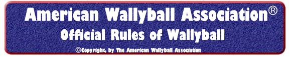 Wallyball Rules