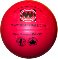 iball_wallyball1